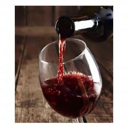 Red Wine Thestia - Merlot - Cabernet Franc 2010 - 750ml 14%vol - Thestia Winery
